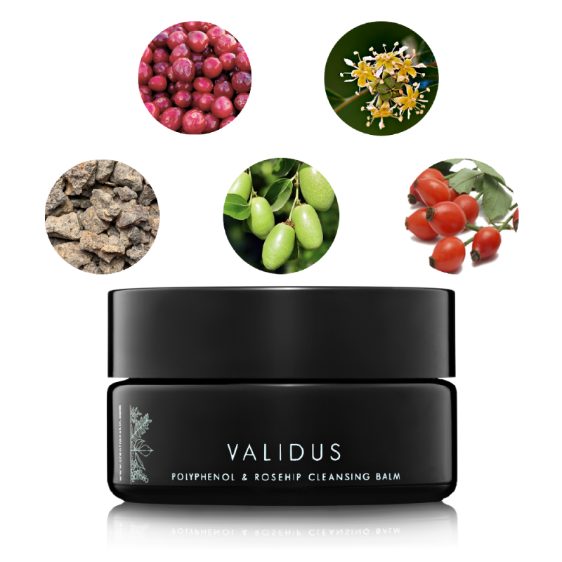 Validus Ingredients